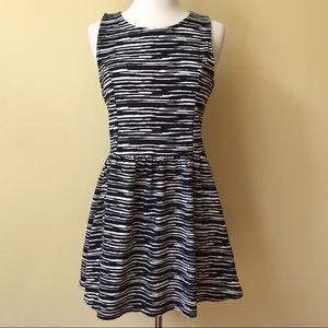 H&M Black and White Fit and Flare Skater Dress